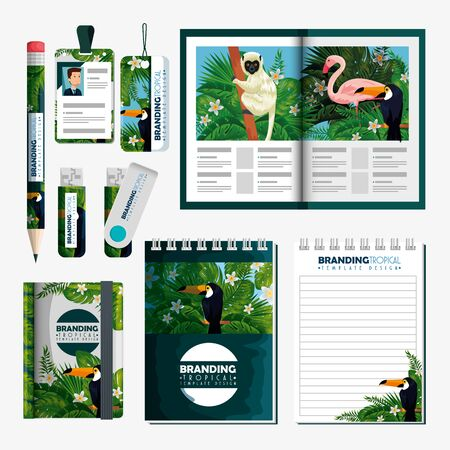 set of tropical brochure with notebooks and usb memory vector illustration