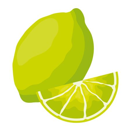 lemon tropical fruits vector illustration on white background Иллюстрация