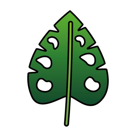 monstera leaf tropical on white background vector illustration