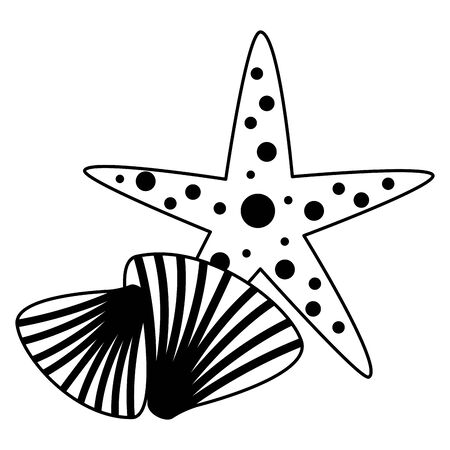 starfish seashell wildlife on white background vector illustration vector illustration
