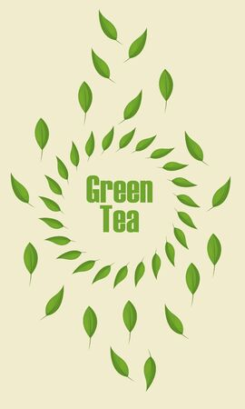 Green tea leaves design, Drink breakfast beverage tradition kitchen and aromatic theme Vector illustration
