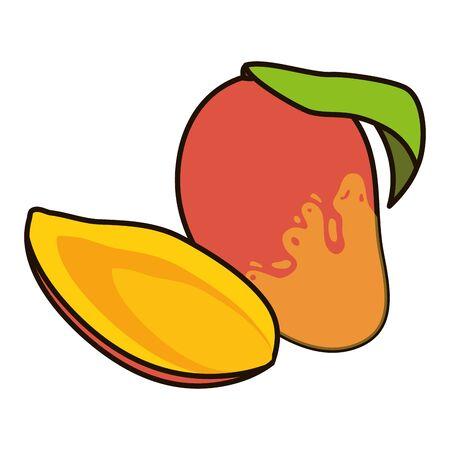 mango tropical vector illustration on white background