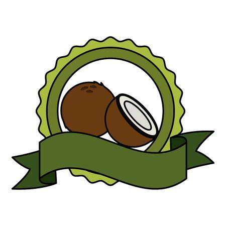coconut tropical fruits badge ribbon vector illustration