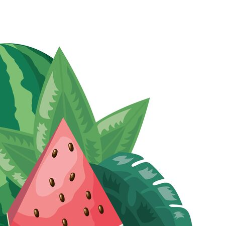 watermelon and foliage leaves tropical fruits vector illustration Иллюстрация