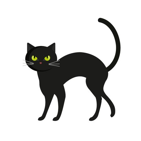 cat animal of halloween vector illustration design 일러스트