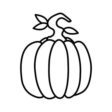 pumpkin fresh vegetable isolated icon vector illustration design