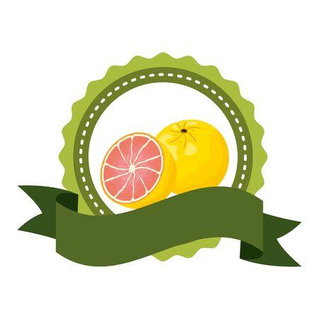 grapefruit tropical fruits badge ribbon vector illustration