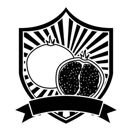 pomegranate tropical fruits ribbon emblem vector illustration