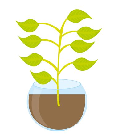 cute plant cartoon isolated over white background. vector Stock Illustratie
