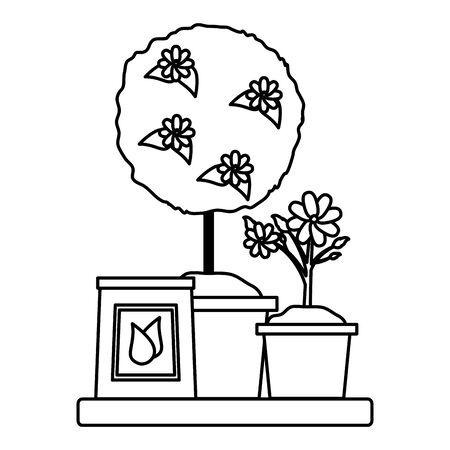 potted tree flower fertilizer gardening flat design vector illustration