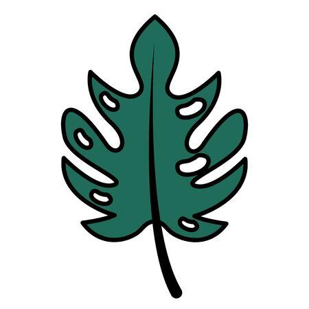 leaf monstera palm tropical foliage vector illustration Иллюстрация