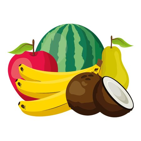 tropical fruits watermelon apple pear banana coconut vector illustration