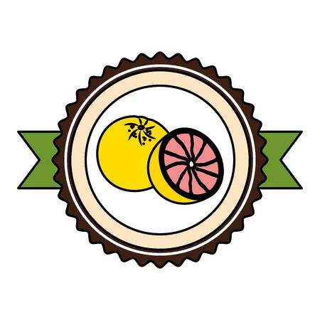 grapefruit tropical fruits sticker design vector illustration