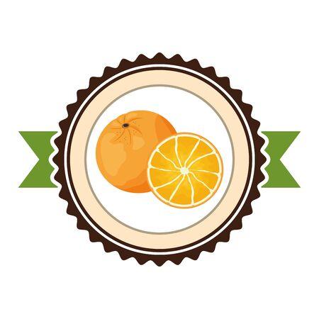 orange tropical fruits sticker design vector illustration