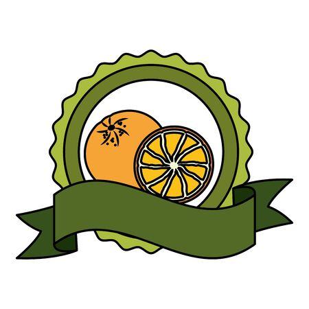 orange tropical fruits badge ribbon vector illustration