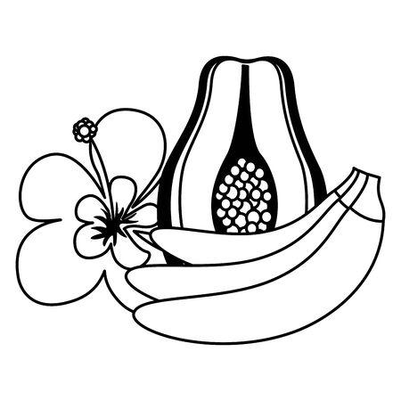 banana papaya flower tropical fruits exotic vector illustration Иллюстрация