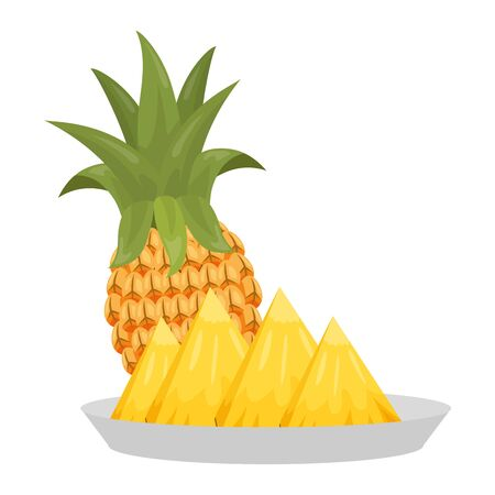 pineapple slice tropical fruits in dish vector illustration