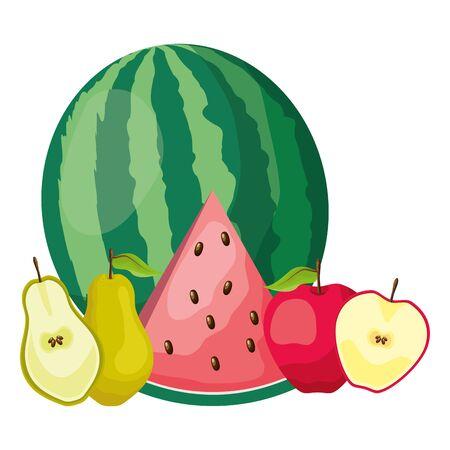 tropical fruits watermelon apple pear vector illustration