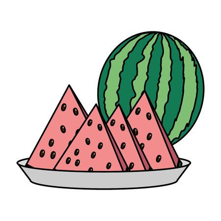 watermelon slice tropical fruits in dish vector illustration