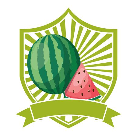 watermelon tropical fruits ribbon emblem vector illustration Ilustração