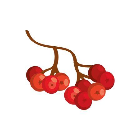 season autumn fruits isolated icon vector illustration design
