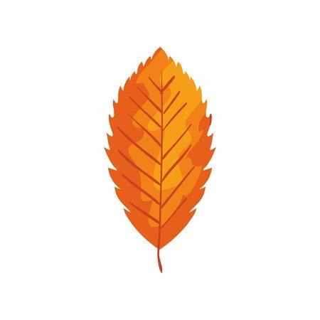 season autumn leaf isolated icon vector illustration design Illusztráció