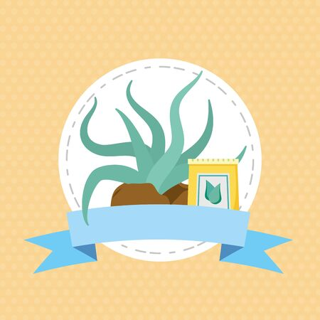 succulent and soil sack plants decoration gardening flat design vector illustration