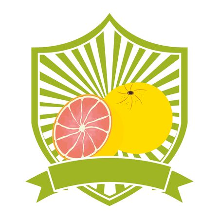 grapefruit tropical fruits ribbon emblem vector illustration