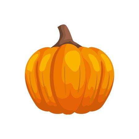 season autumn pumpkin isolated icon vector illustration design