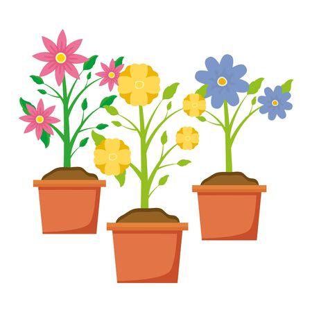potted flowers decoration gardening flat design vector illustration