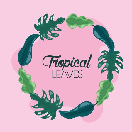 frame decoration pink background tropical leaves vector illustration