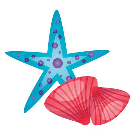 summer time holiday seashell and starfish vector illustration