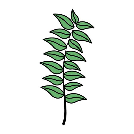 green branch leaves foliage on white background vector illustration