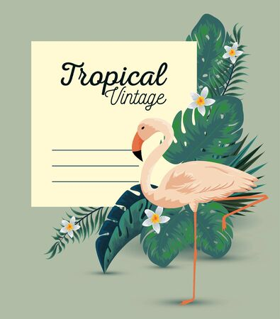 tropical card with exotic flamish and leaves vector illustration