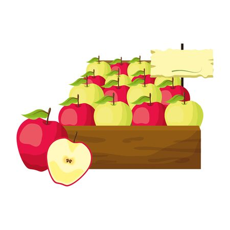 apples fresh tropical fruits in wooden box vector illustration