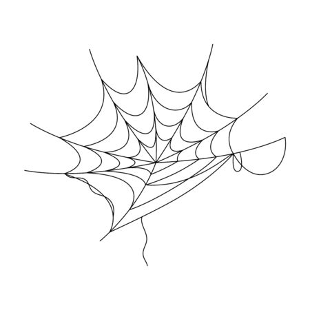 cobweb  illustration design 矢量图像