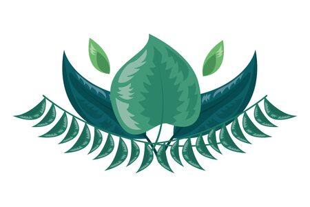 botanical leaf foliage arrangement on white background illustration Vector Illustration