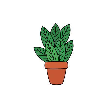 houseplant in pot illustration design