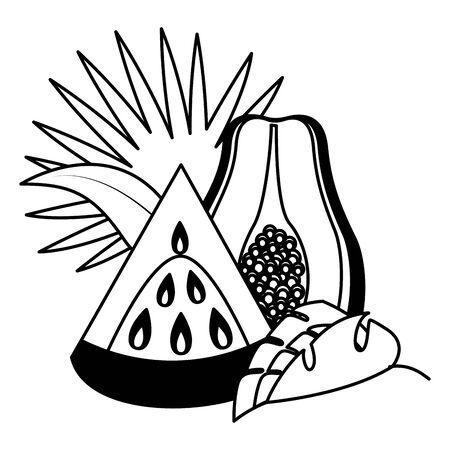 watermelon papaya  tropical fruits   illustration Иллюстрация
