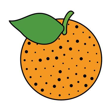 orange citrus fruit illustration design