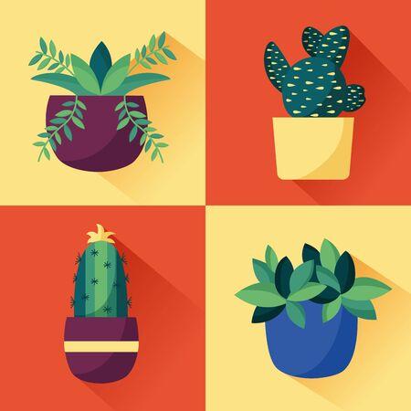 decorative house plants cactus natural vector illustration