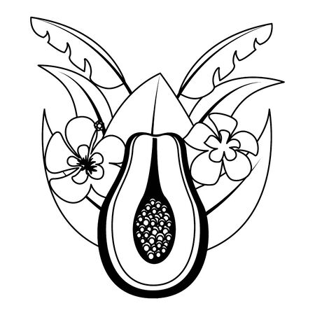 papaya flowers tropical fruits foliage exotic vector illustration