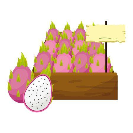 dragon fruit fresh tropical fruits in wooden box vector illustration