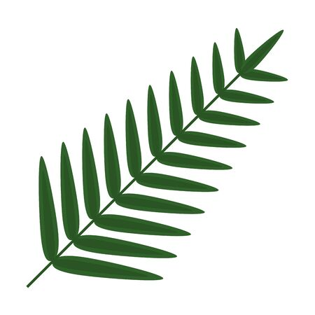 exotic leaf palm tropical icon vector illustration design Banque d'images - 130371277