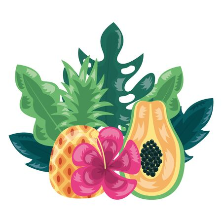 pineapple papaya flower tropical fruits foliage exotic vector illustration