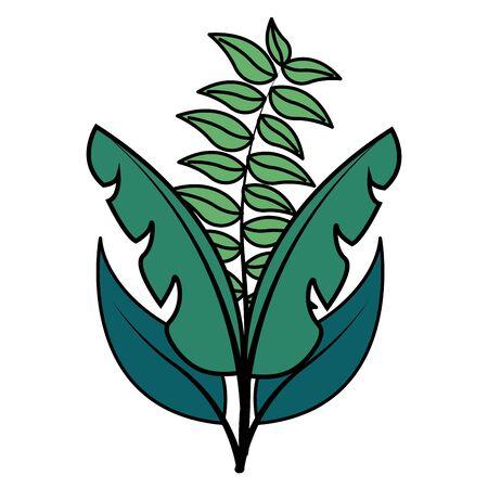 botanical leaf foliage arrangement on white background vector illustration Ilustração