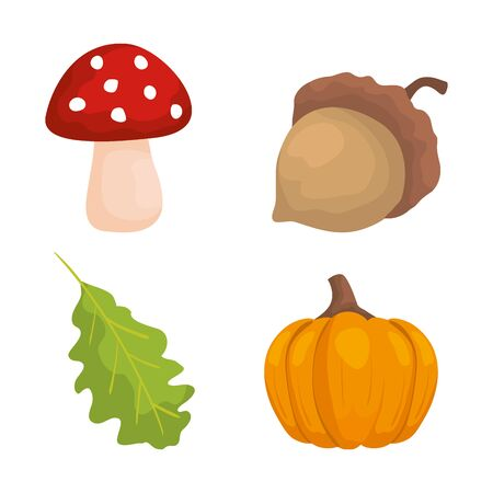 set of nature fungus with nut and leaf with pumpkin over white background, vector illustration