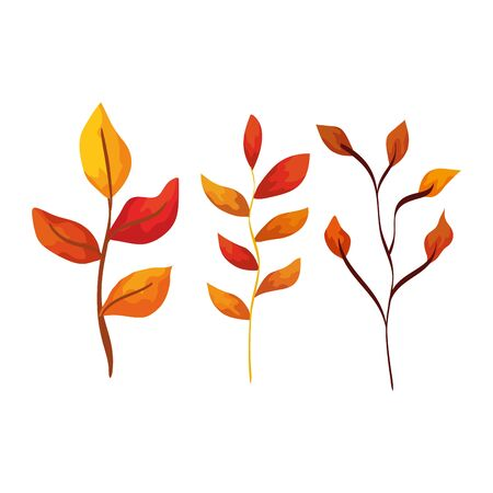 season autumn branches with leafs vector illustration design