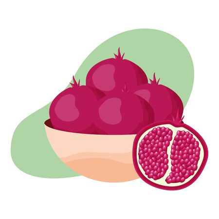 tropical fruits pomegranate in bowl vector illustration