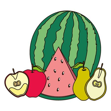 tropical fruits watermelon apple pear vector illustration